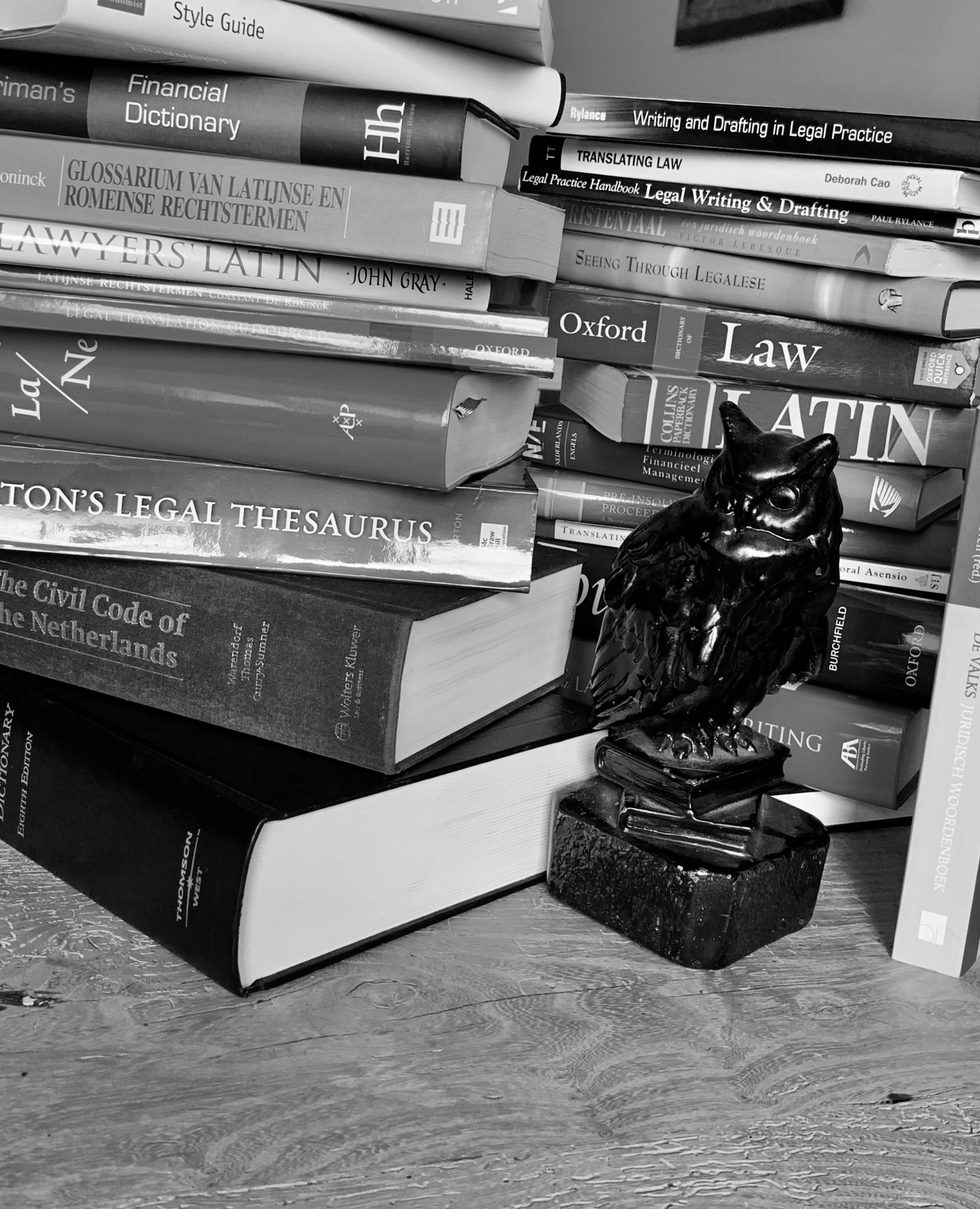 Statue of owl in front of stack of legal dictionaries and text books for corporate law and commercial litigation